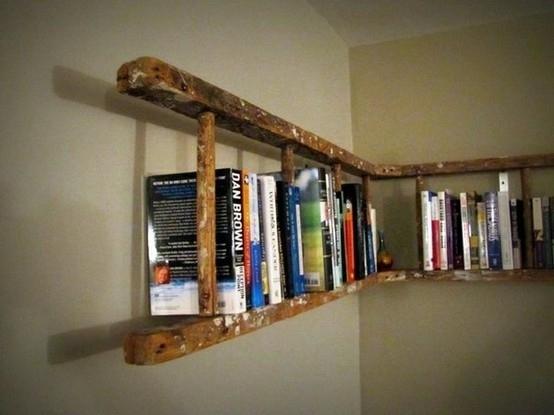 ladder1