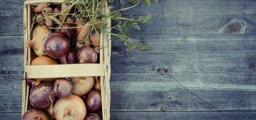Април- най-важният месец за градинарите