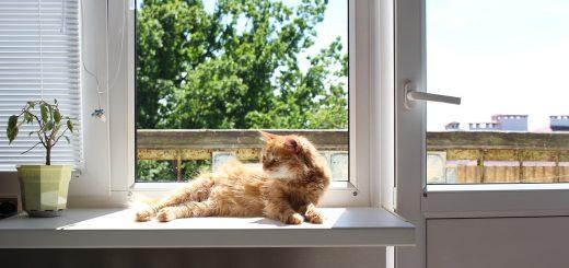 Пуснете слънчевата светлина в дома!